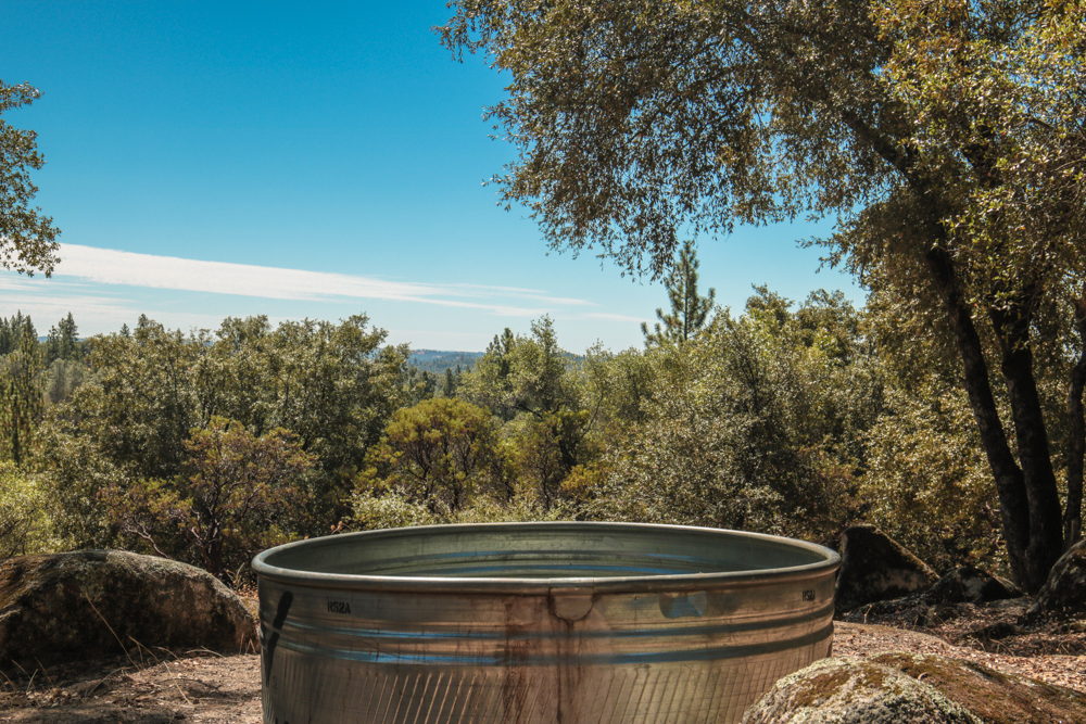 What Size Stock Tank Pool?