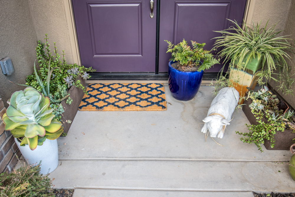 Entry Way Succulent Garden Inspiration